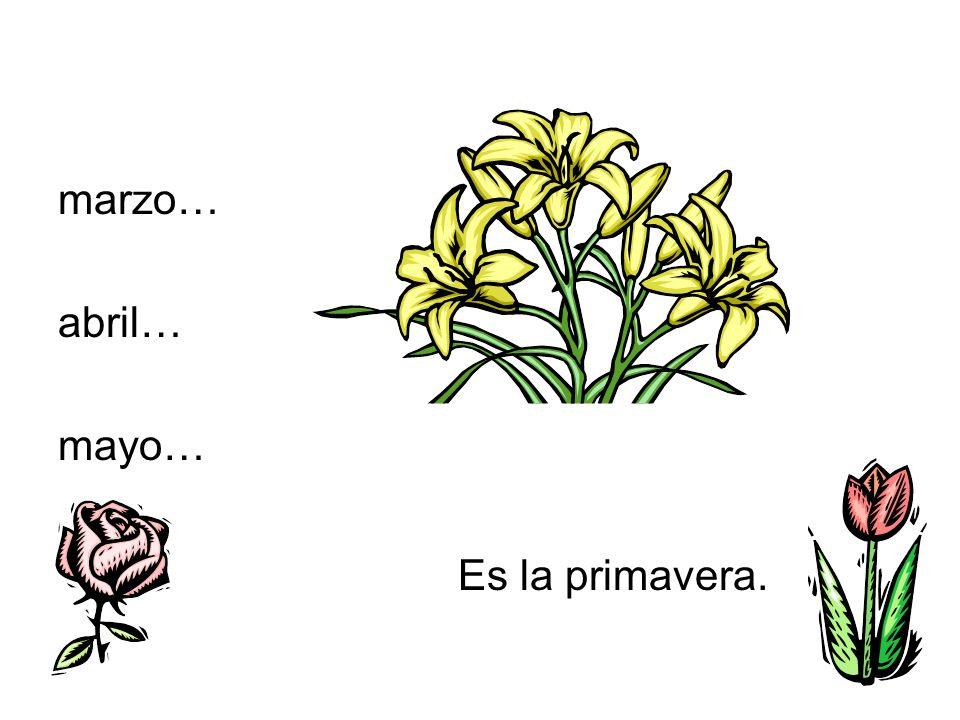 marzo… abril… mayo… Es la primavera.