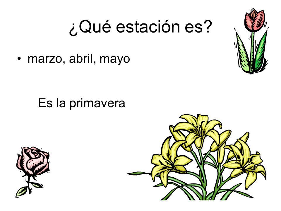 ¿Qué estación es marzo, abril, mayo Es la primavera