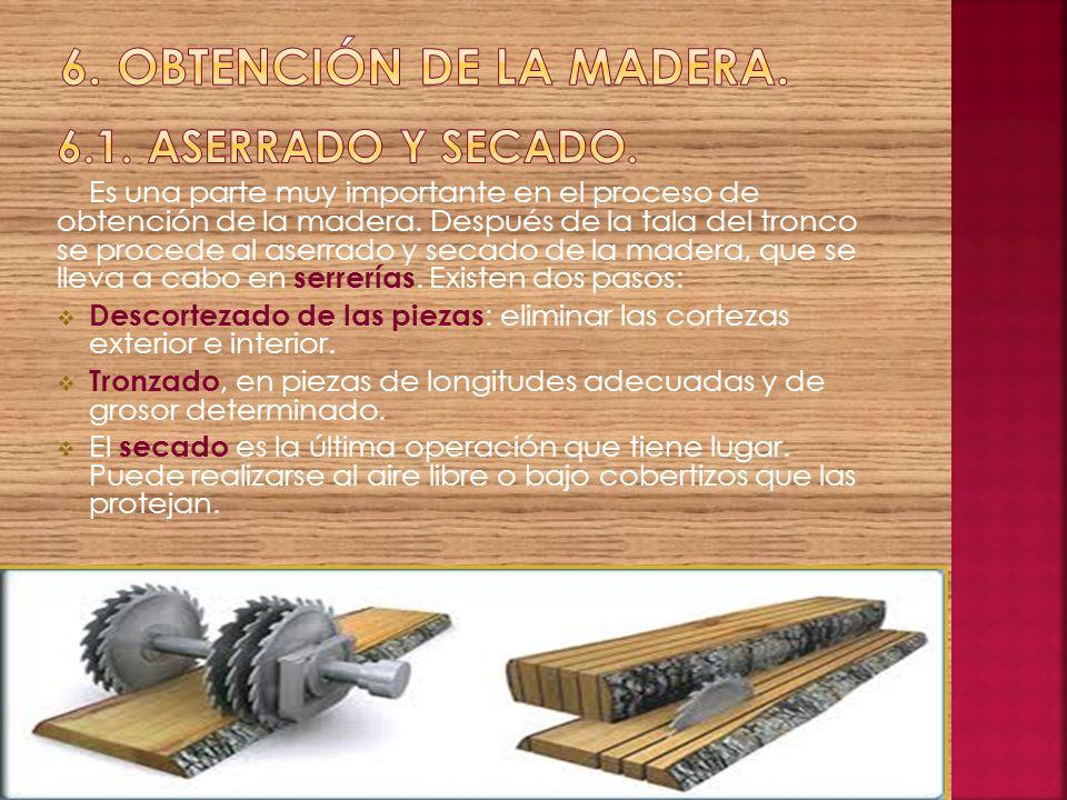 6. Obtención de la madera. 6.1. aserrado y secado.