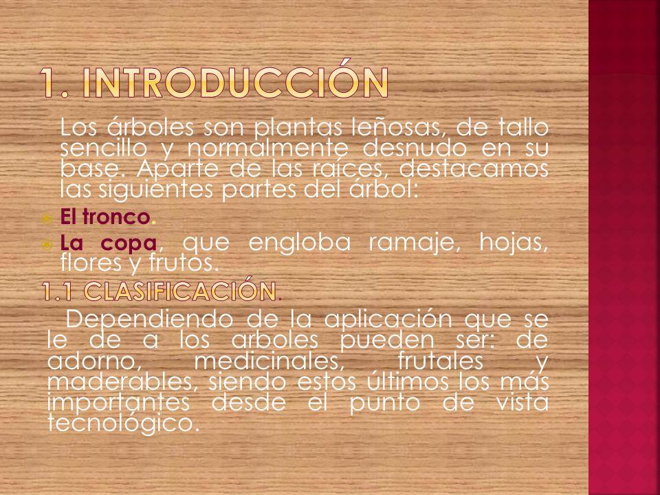1. INTRODUCCIÓN 1.1 Clasificación.