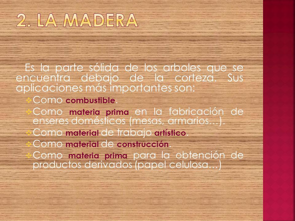 2. la madera Es la parte sólida de los arboles que se encuentra debajo de la corteza. Sus aplicaciones más importantes son: