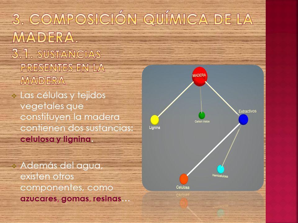 3. Composición química de la madera.