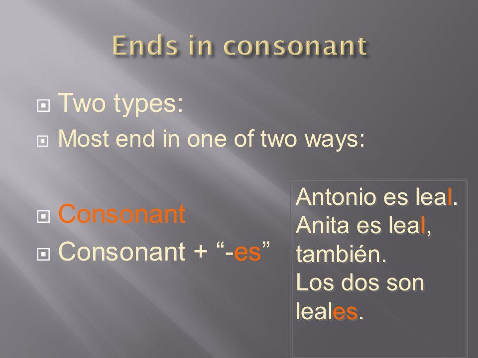 Ends in consonant Two types: Consonant Consonant + -es