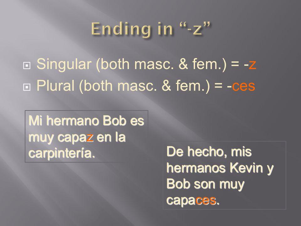 Ending in -z Singular (both masc. & fem.) = -z
