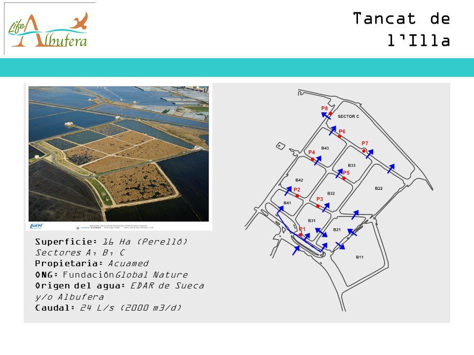 Tancat de l'Illa Superficie: 16 Ha (Perelló) Sectores A, B, C