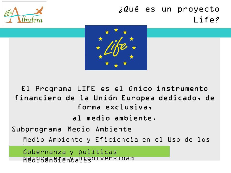 ¿Qué es un proyecto Life