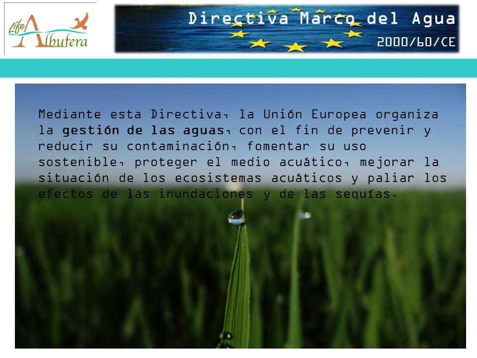 Directiva Marco del Agua 2000/60/CE