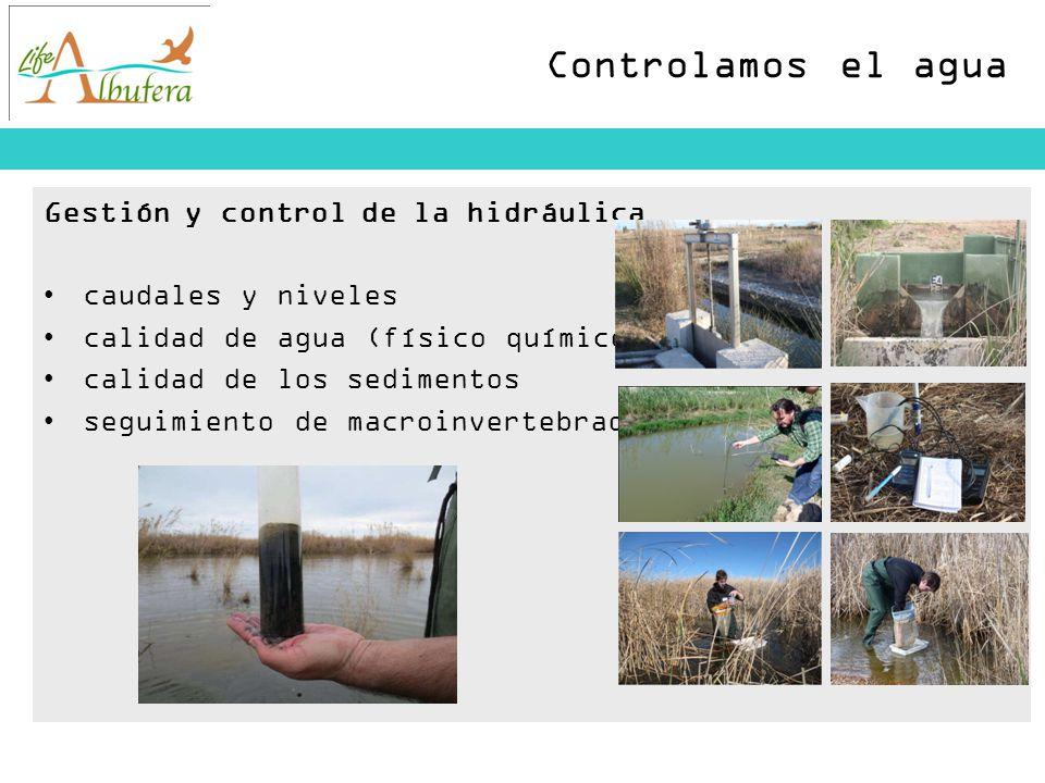 Controlamos el agua Gestión y control de la hidráulica