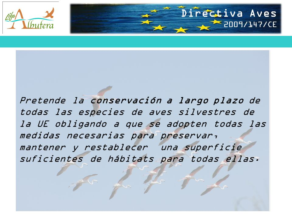 Directiva Aves 2009/147/CE