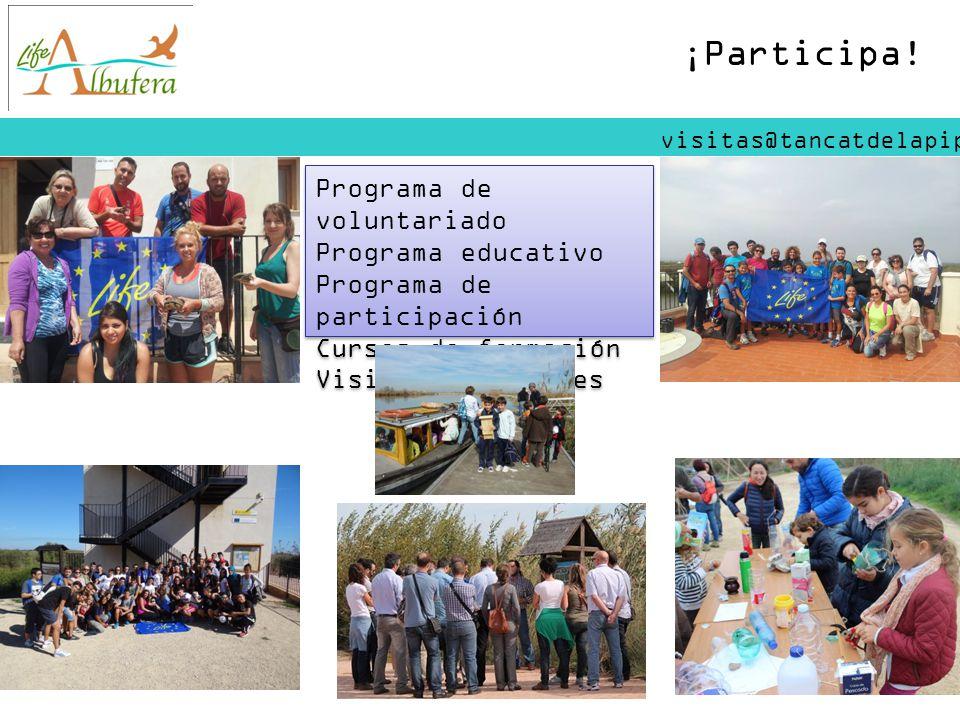 ¡Participa! Programa de voluntariado Programa educativo