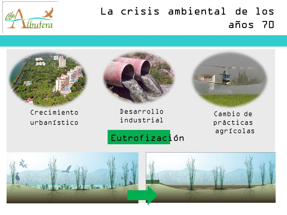 La crisis ambiental de los años 70