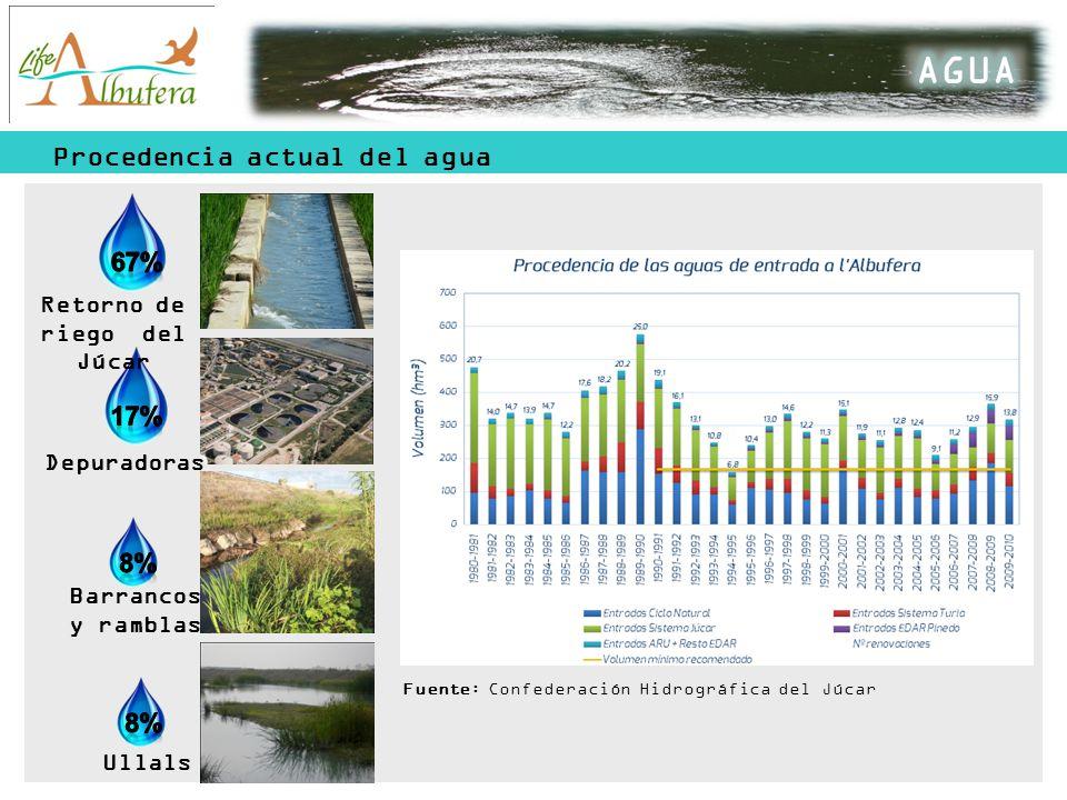 AGUA Procedencia actual del agua 67% 17% 8% Retorno de riego del Júcar