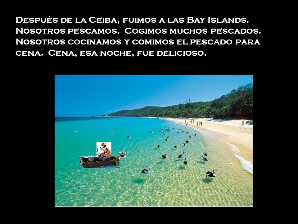 Después de la Ceiba, fuimos a las Bay Islands. Nosotros pescamos
