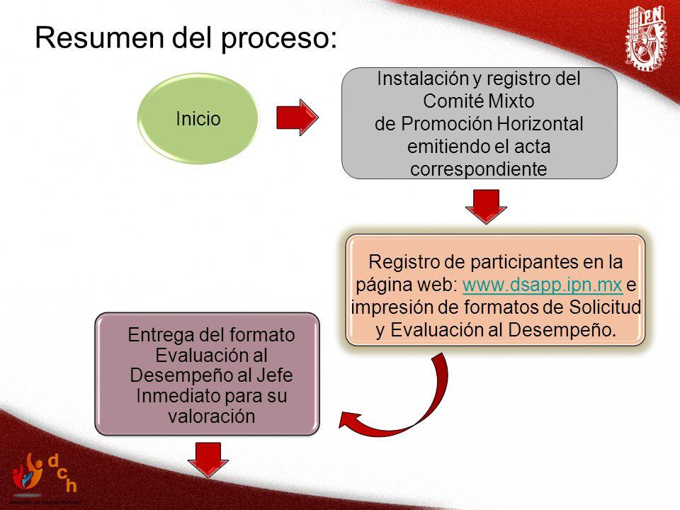 Resumen del proceso: Instalación y registro del Comité Mixto Inicio