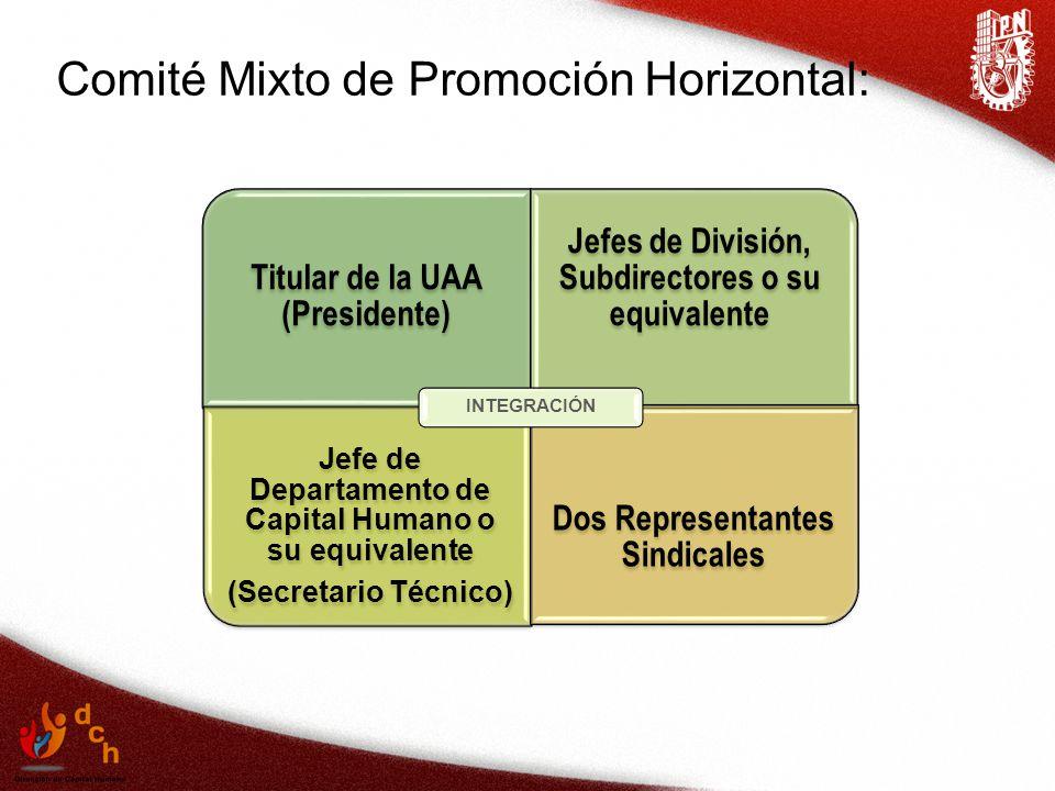 Comité Mixto de Promoción Horizontal: