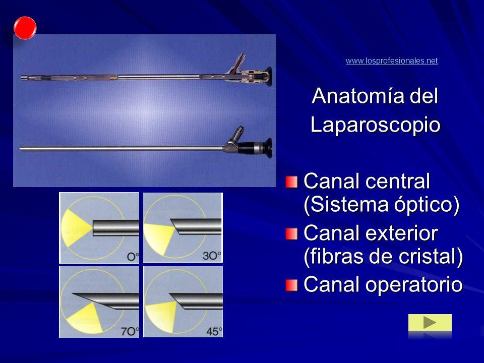 Canal central (Sistema óptico) Canal exterior (fibras de cristal)