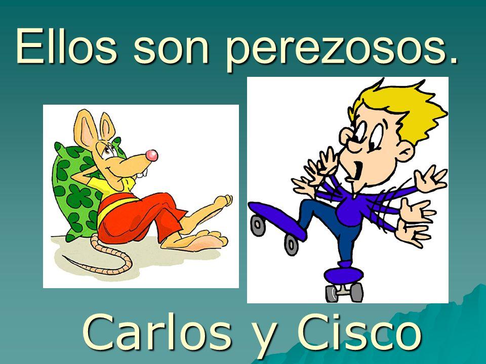 Ellos son perezosos. Carlos y Cisco
