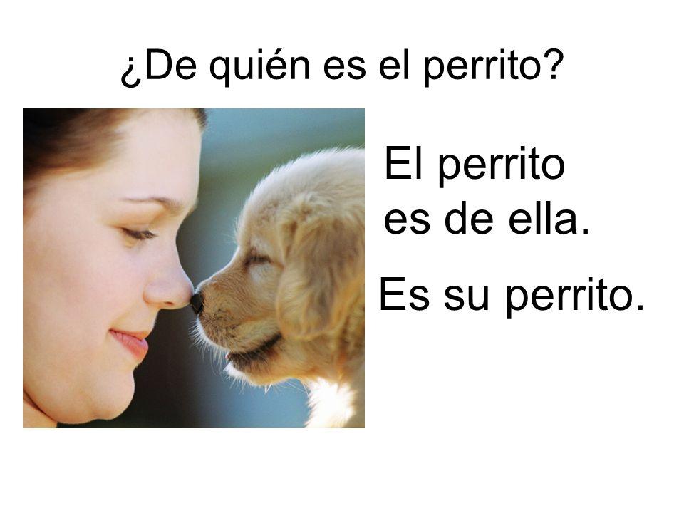 ¿De quién es el perrito El perrito es de ella. Es su perrito.