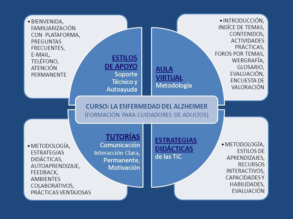 ESTILOS DE APOYO Soporte Técnico y Autoayuda AULA VIRTUAL Metodología