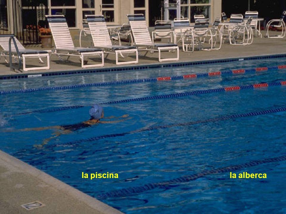 la piscina la alberca