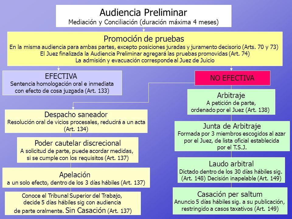 Audiencia Preliminar Promoción de pruebas EFECTIVA NO EFECTIVA