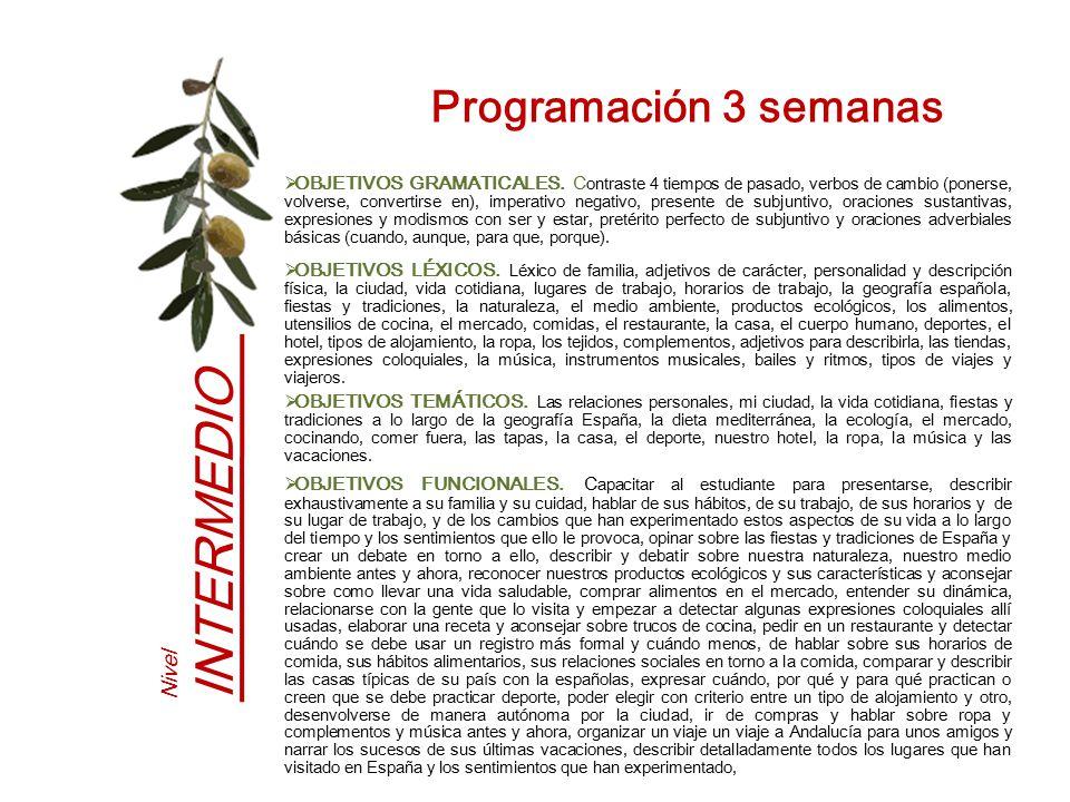 Programación 3 semanas Nivel INTERMEDIO