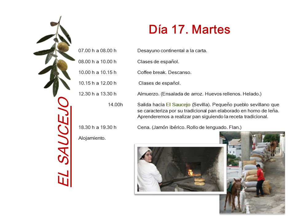 Día 17. Martes 07.00 h a 08.00 h Desayuno continental a la carta. 08.00 h a 10.00 h Clases de español.