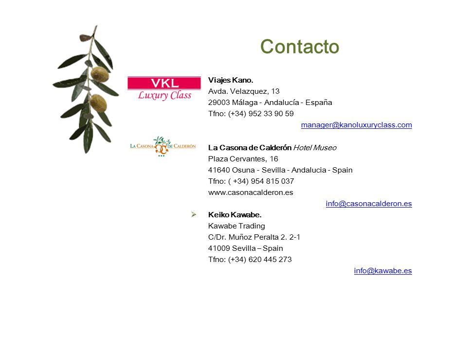 Contacto Viajes Kano. Avda. Velazquez, 13