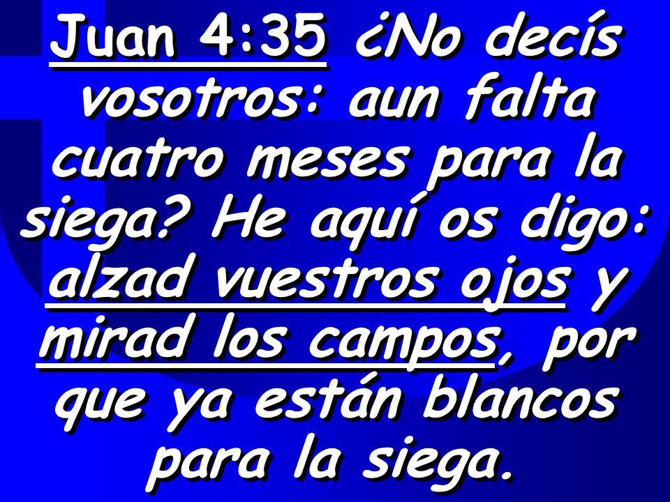 Juan 4:35 ¿No decís vosotros: aun falta cuatro meses para la siega