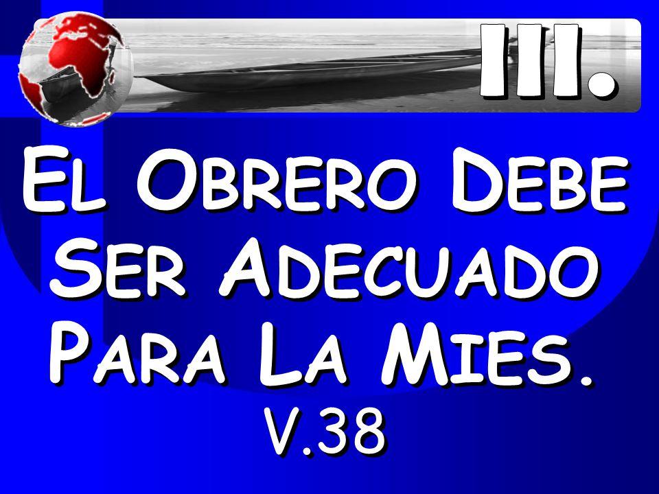 EL OBRERO DEBE SER ADECUADO PARA LA MIES. V.38