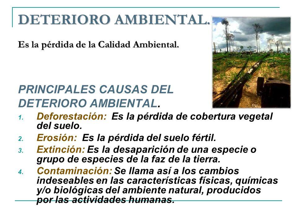 DETERIORO AMBIENTAL. Es la pérdida de la Calidad Ambiental.