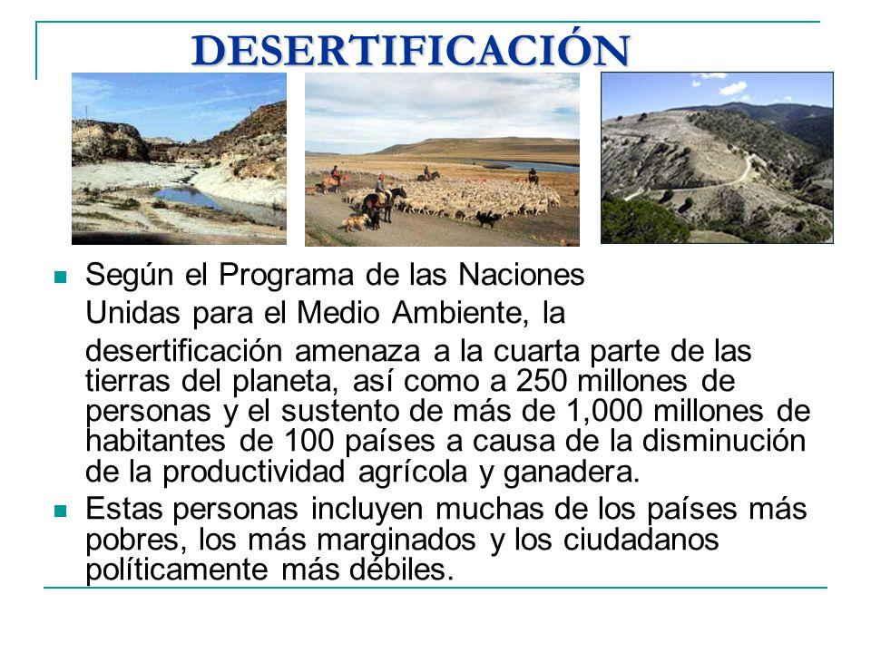 DESERTIFICACIÓN Según el Programa de las Naciones