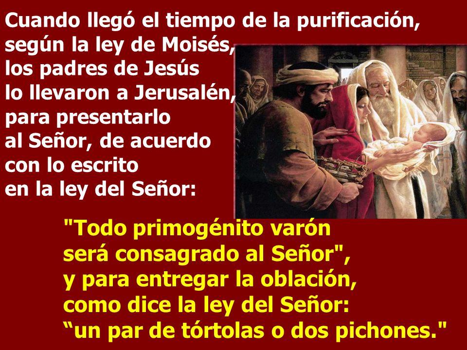 Cuando llegó el tiempo de la purificación, según la ley de Moisés, los padres de Jesús lo llevaron a Jerusalén, para presentarlo al Señor, de acuerdo con lo escrito en la ley del Señor: