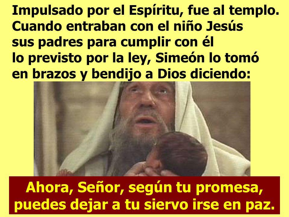 Ahora, Señor, según tu promesa, puedes dejar a tu siervo irse en paz.