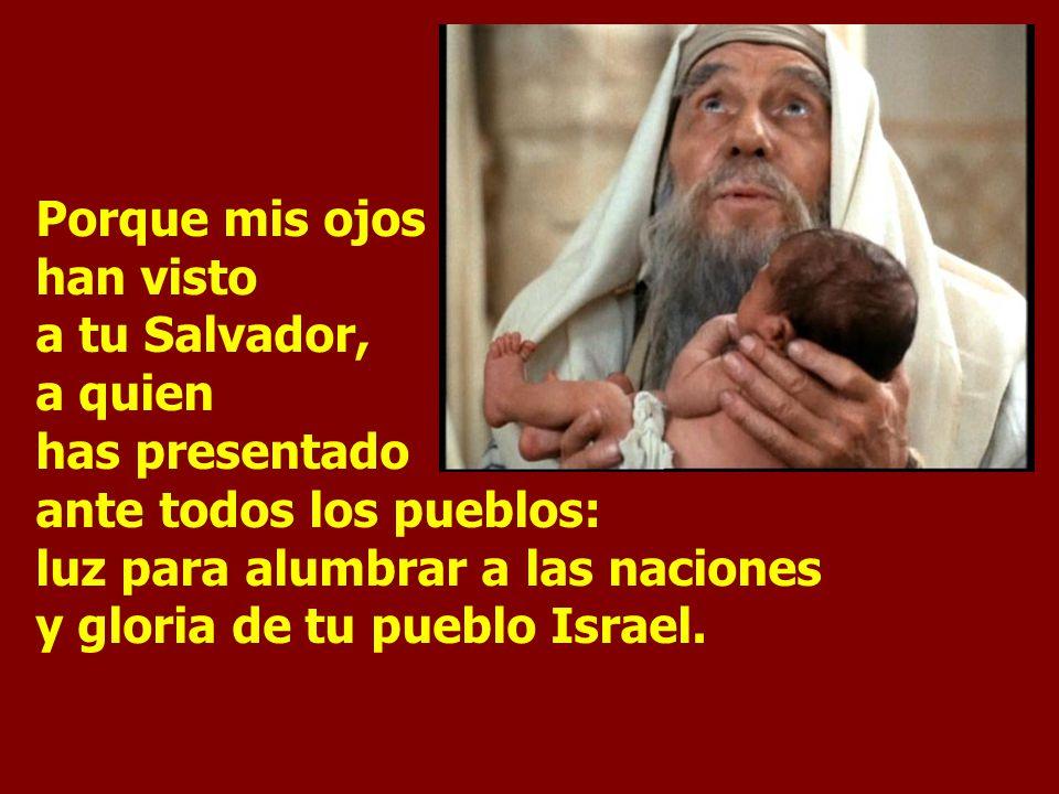 Porque mis ojos han visto a tu Salvador, a quien has presentado ante todos los pueblos: luz para alumbrar a las naciones y gloria de tu pueblo Israel.