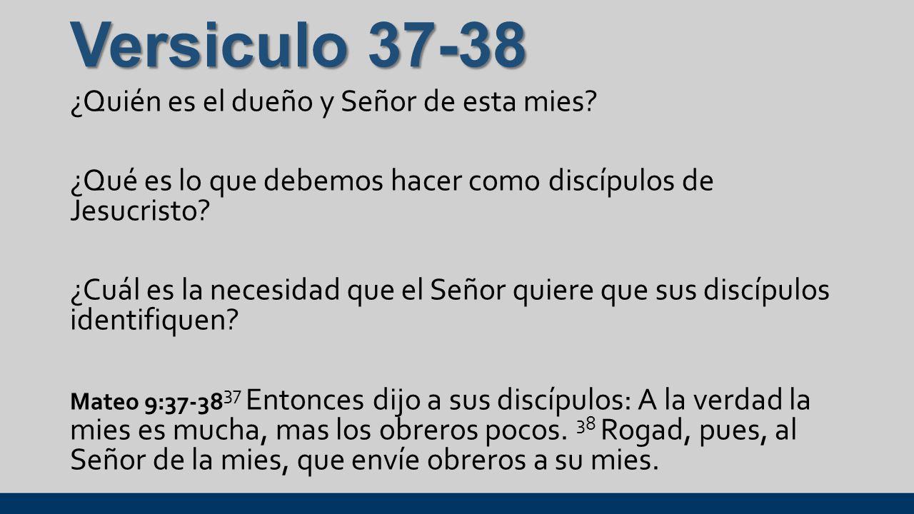 Versiculo 37-38 ¿Quién es el dueño y Señor de esta mies