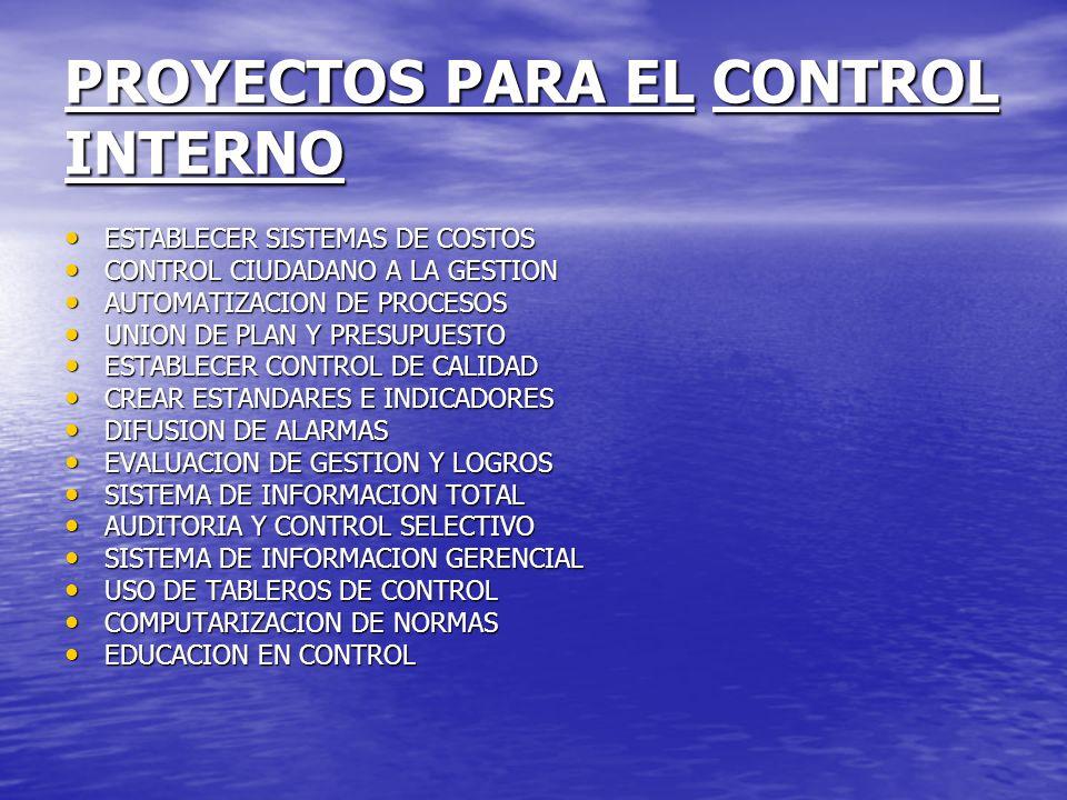 PROYECTOS PARA EL CONTROL INTERNO