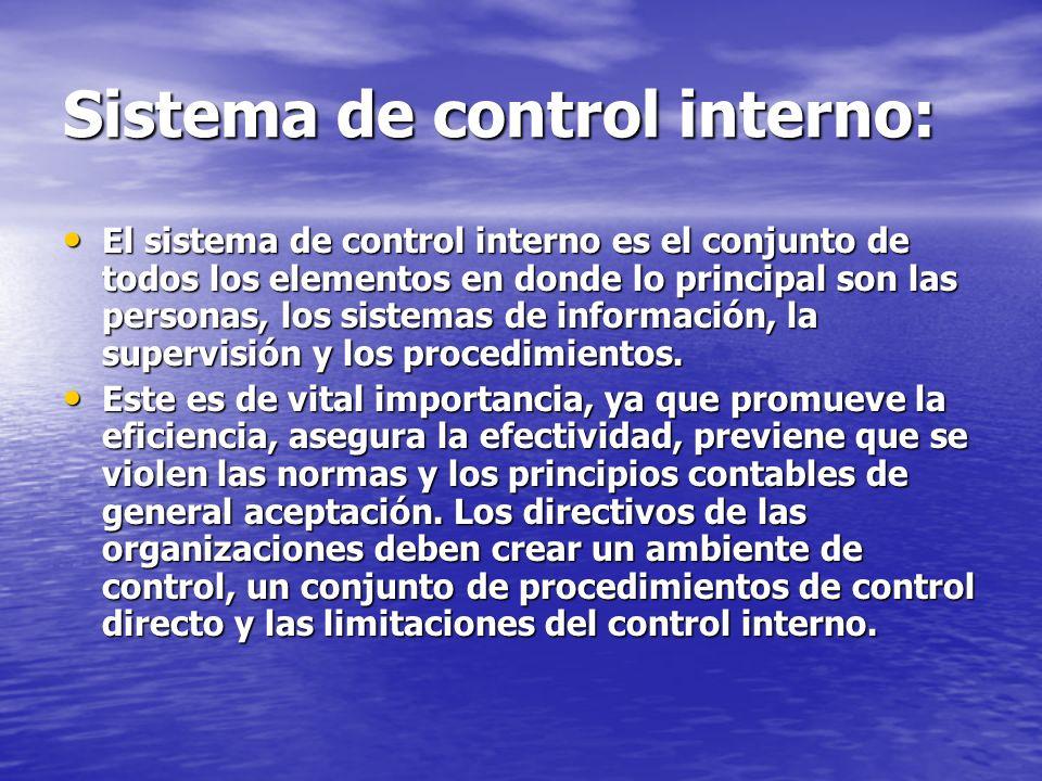 Sistema de control interno: