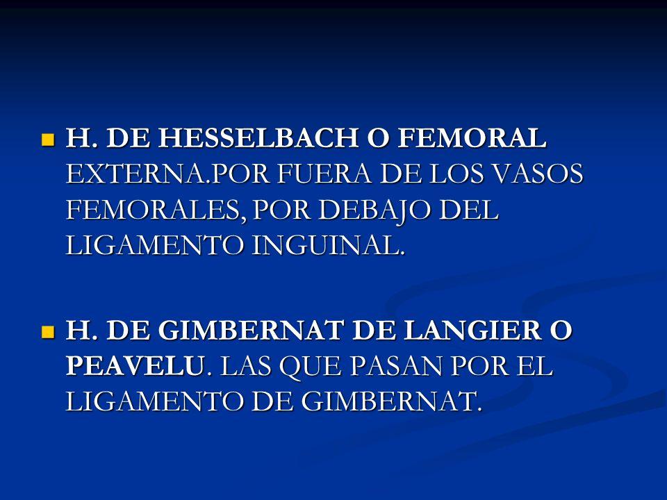 H. DE HESSELBACH O FEMORAL EXTERNA