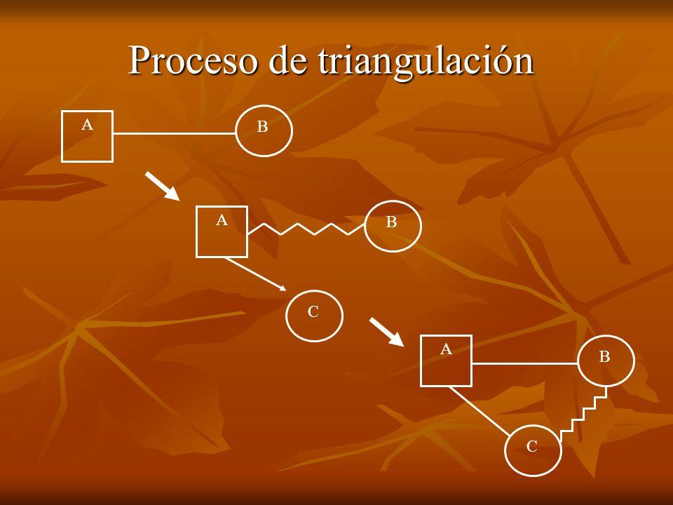 Proceso de triangulación