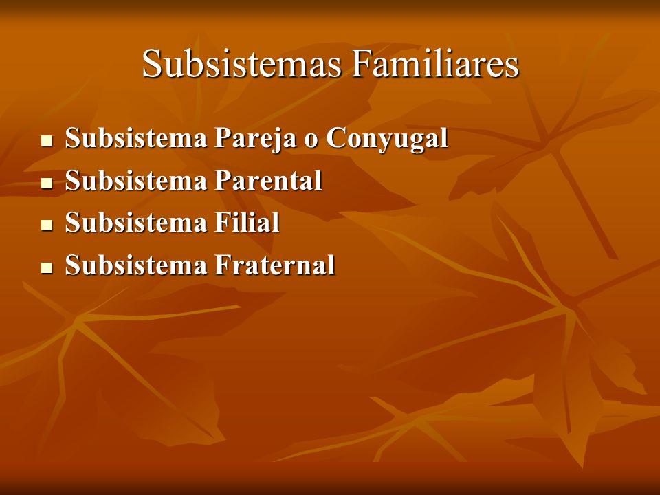 Subsistemas Familiares