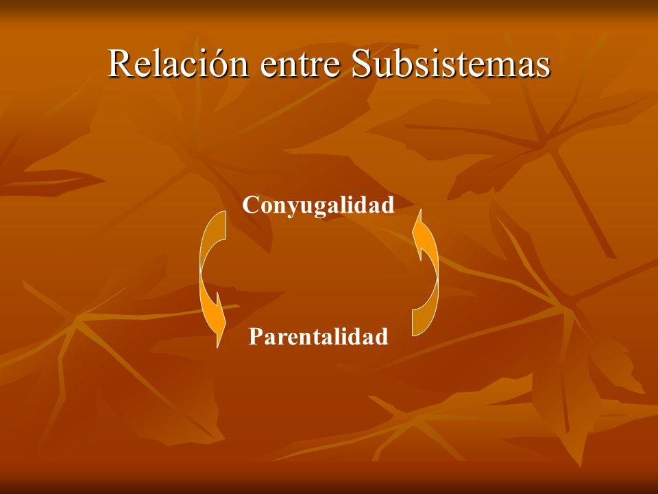Relación entre Subsistemas