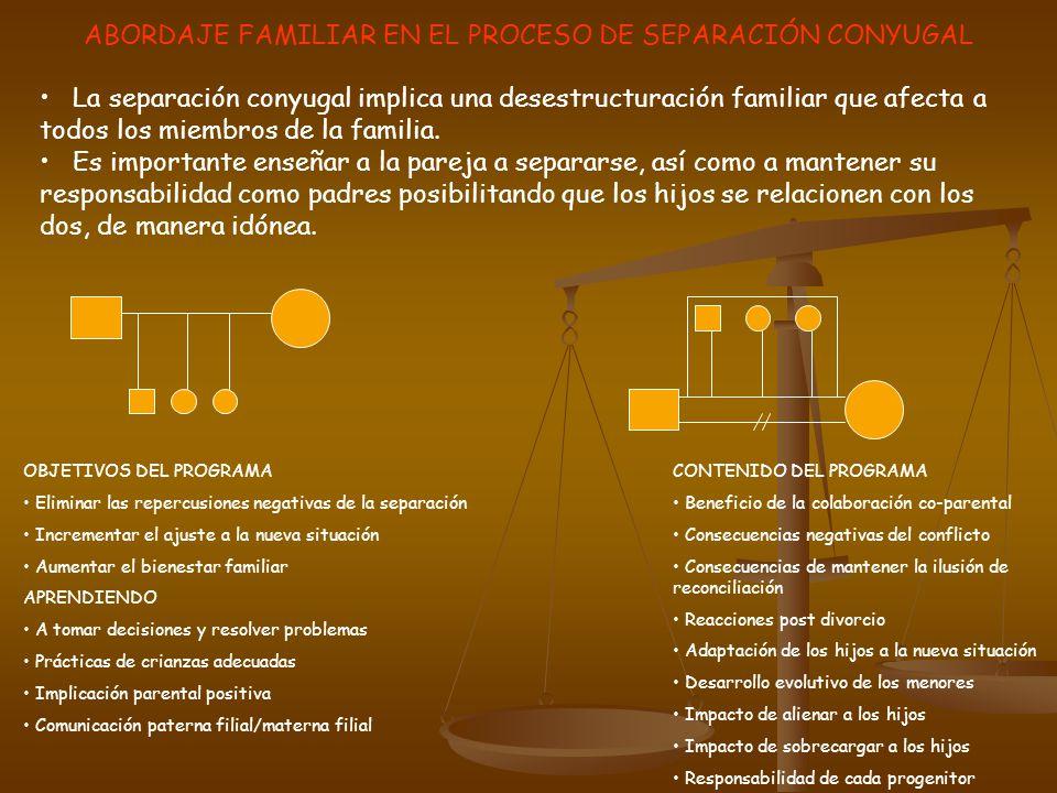 ABORDAJE FAMILIAR EN EL PROCESO DE SEPARACIÓN CONYUGAL