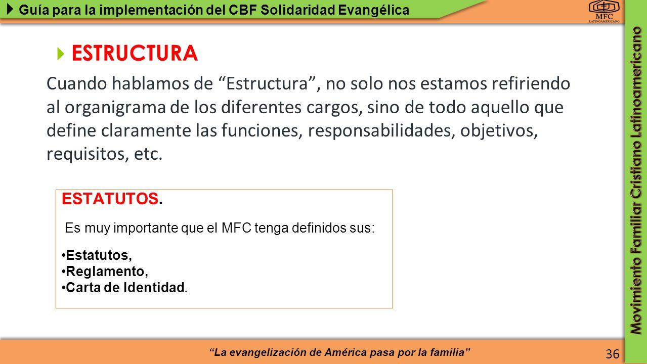 ESTRUCTURA del MFC