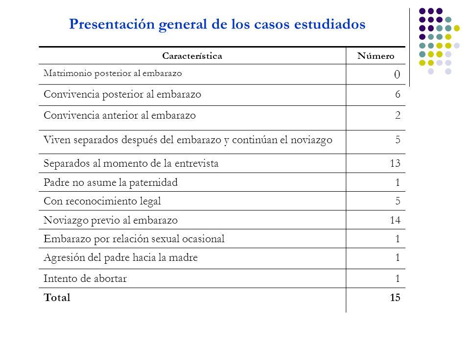 Presentación general de los casos estudiados