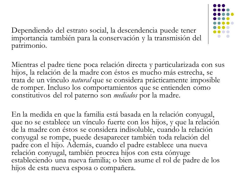 Dependiendo del estrato social, la descendencia puede tener importancia también para la conservación y la transmisión del patrimonio.
