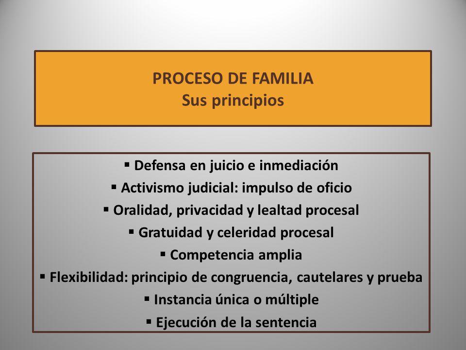 PROCESO DE FAMILIA Sus principios