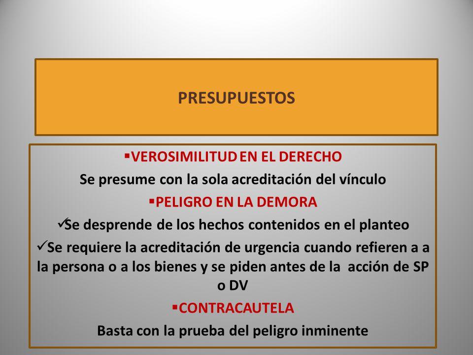 PRESUPUESTOS VEROSIMILITUD EN EL DERECHO