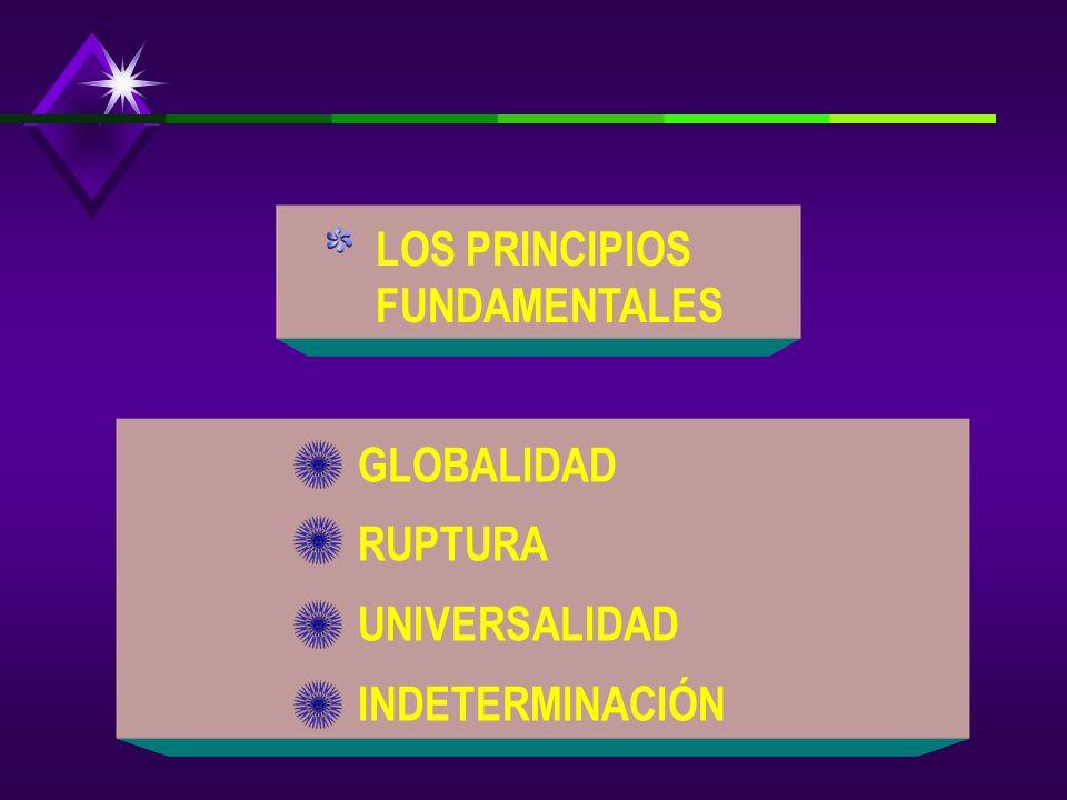 LOS PRINCIPIOS FUNDAMENTALES