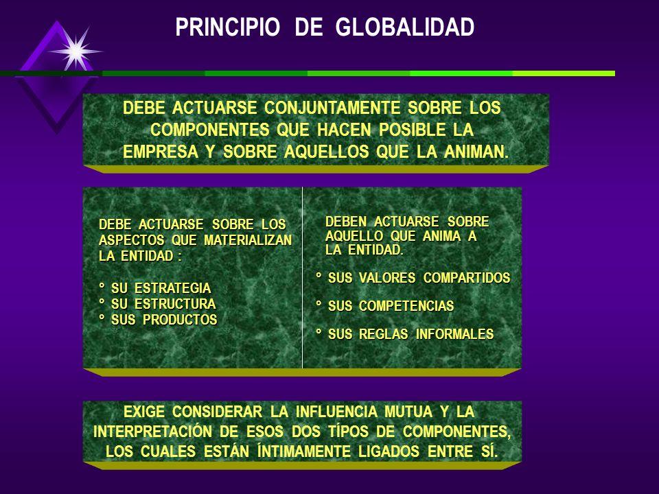 PRINCIPIO DE GLOBALIDAD